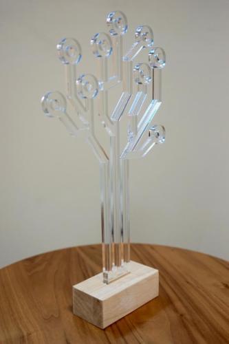 trophée design bois plexi
